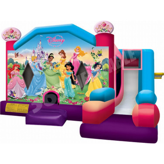 Disney Princess Combo Slide
