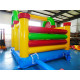 Commercial Inflatables
